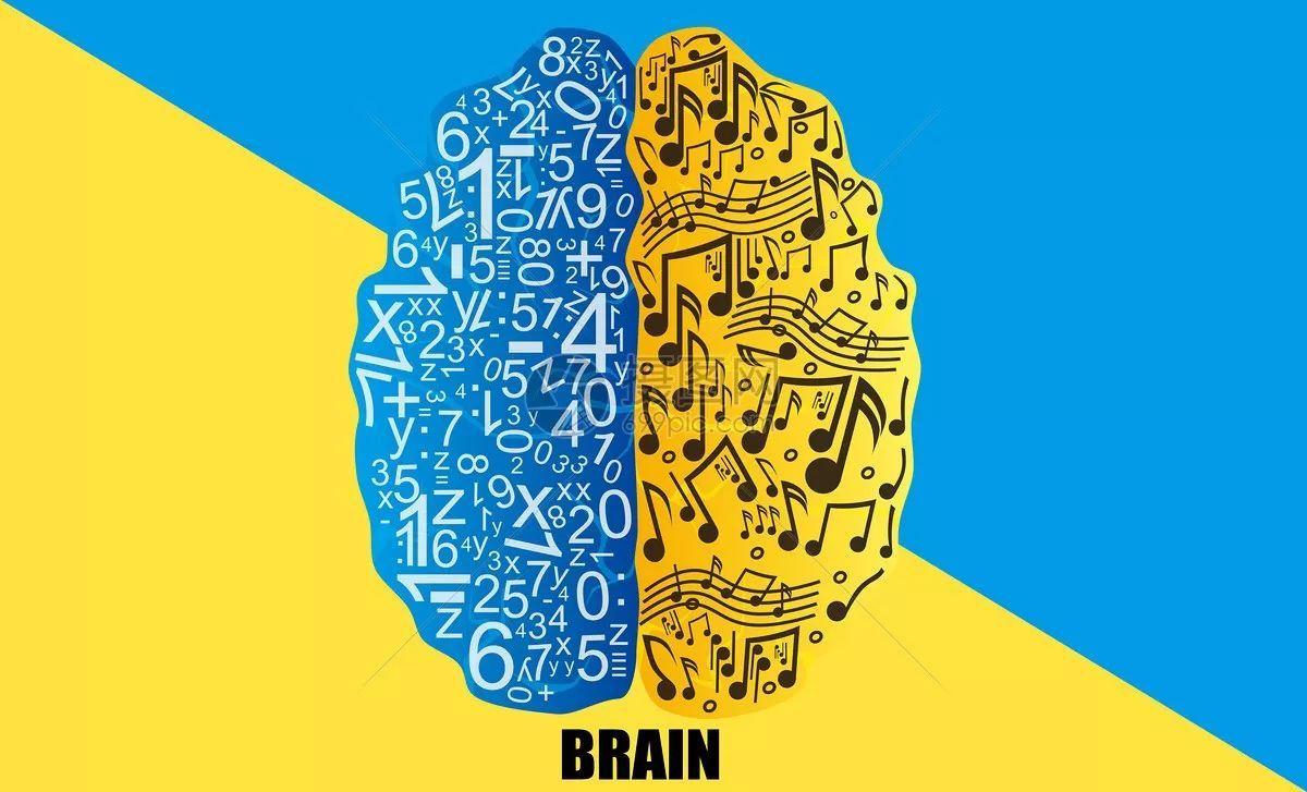 左脑��!$_误区一:我的孩子需要开发左脑,还是右脑?