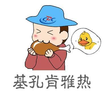 这家杭州禅意民宿美爆了,气质完全不输于日本民宿
