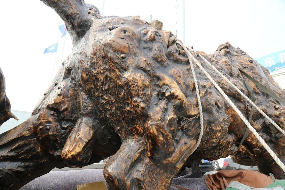 农村老汉挖树根雕巨牛,运进城卖六万不砍价,有人却说至少值30万