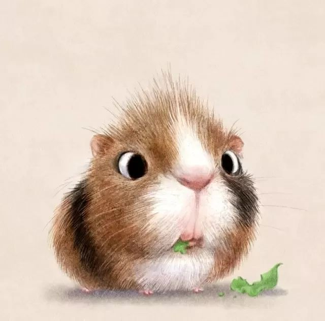 超萌的彩铅动物插画,萌你一脸血