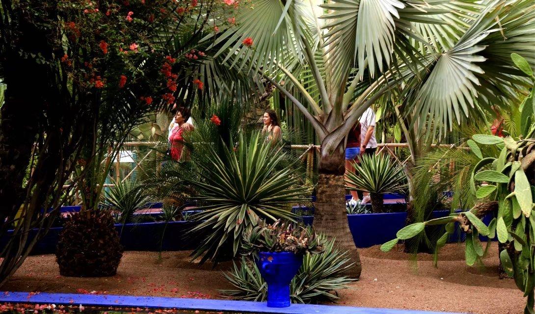"""""""伊夫圣洛朗花园""""诠释着马拉喀什特有的色彩"""