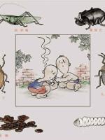 幽门螺杆菌复发率高、难消除,长期服用它,即可解决这个问题!