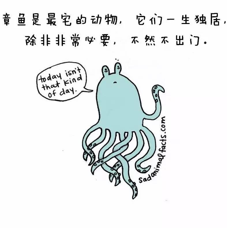 中国医生作为一个整体想要获得尊重,还有很长的路需要走