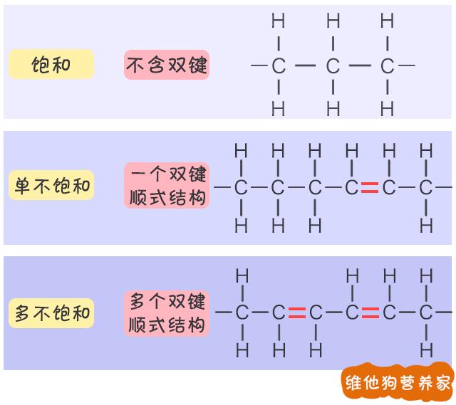 其实指的是,脂肪酸中的分子结构和排列方式的不同.图片