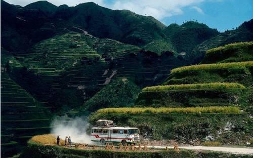 【o招标】杭州顶津食品2017黄山厂运输招标公告