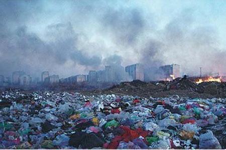 往往都是被焚烧或填埋处理,带来严峻的环境污染问题.