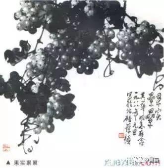 国画葡萄的各种画法教程,水墨葡萄的画法步骤,工笔勾线葡萄的画