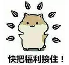 王思聪公开讽刺坐实李小璐出轨传闻,做头发成为2018开年第一梗