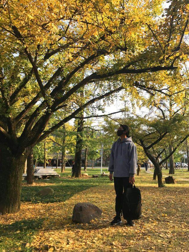 唐朝诗人白居易,一代诗魔影响日本朝鲜,但抵不过包办婚姻