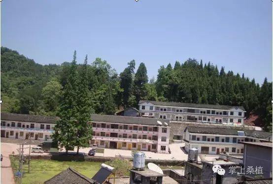 鹤峰有多少人口_里水网手机版