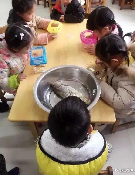 【科普营养】医院营养师教您:找到最适合自己的腊八粥!