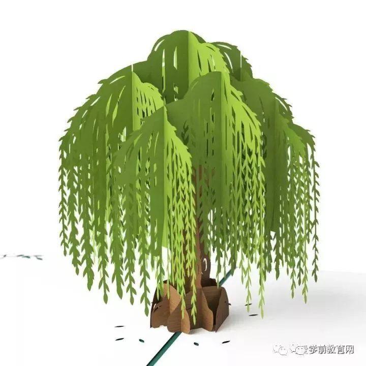 柳树 图片