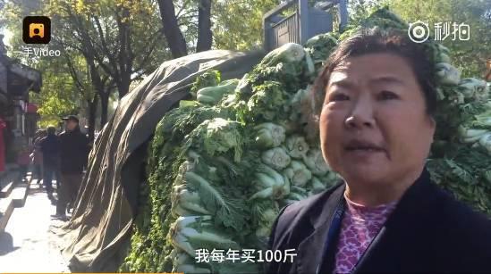【游|趣闻】我们北方人冬天大白菜都是100斤买的!犀牛瓶子教程图片
