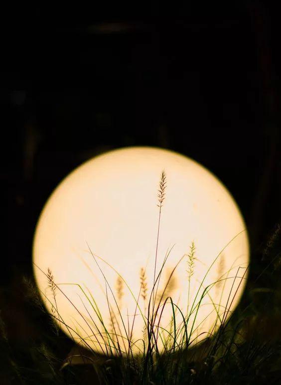 月夜美人图,太美了 - 冰融 - 冰融的博客