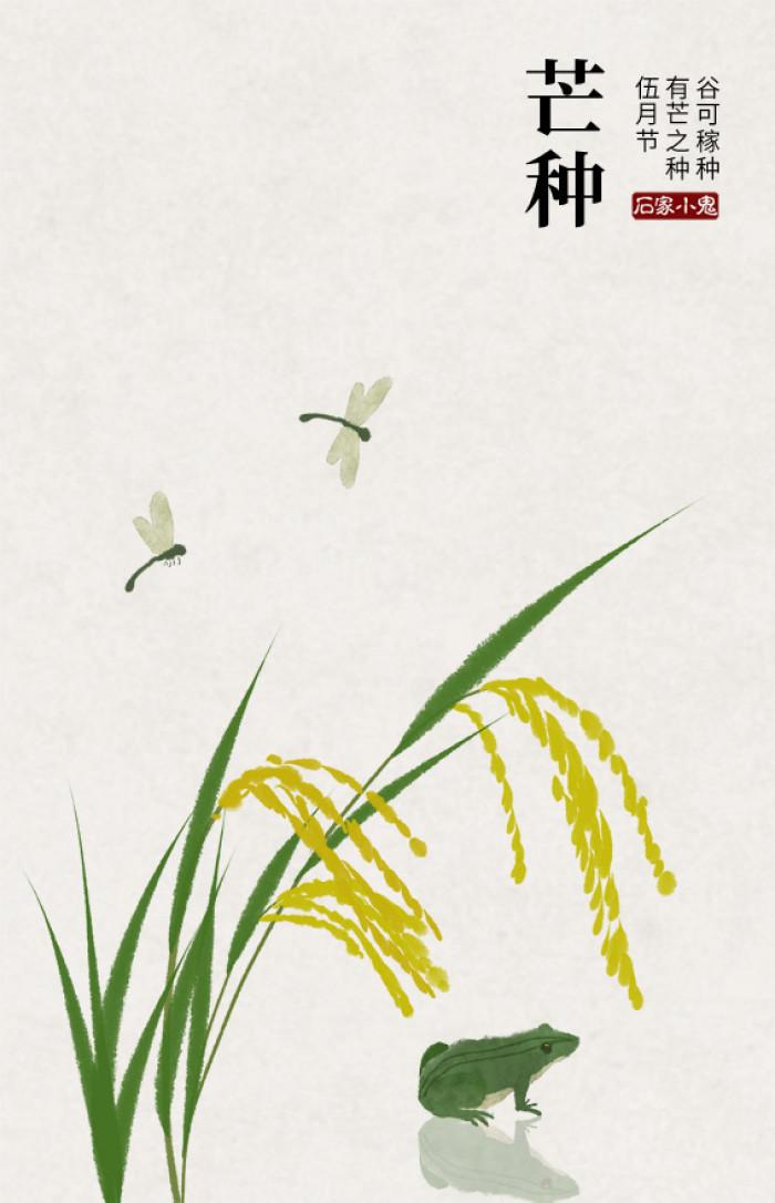 手绘荷花蜻蜓古风