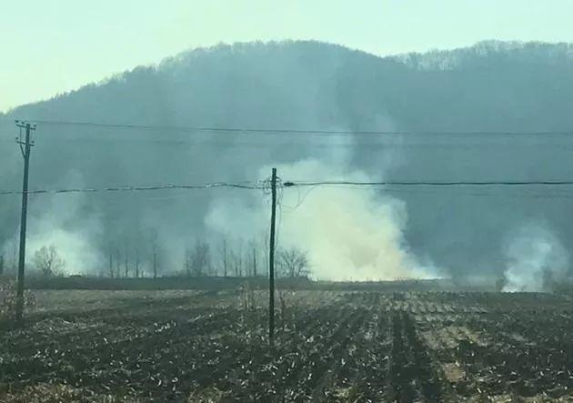 秸秆焚烧屡禁不止严重污染环境,给它找出路显得尤为重要