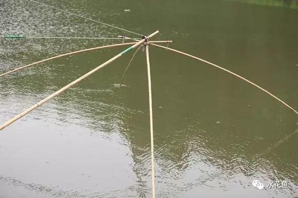 撒网的原理_撒网捕鱼原理示意图