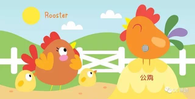 △鸡爸爸,鸡妈妈和鸡宝宝之间的互动超级有爱