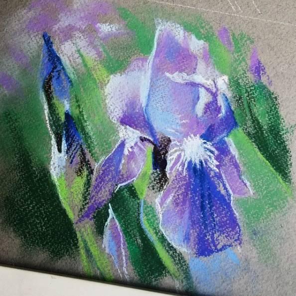 她画的每一束花