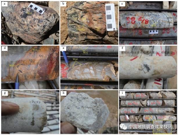 班公湖-怒江成矿带西段发现首例石英脉型钨矿 - 探矿者           - .