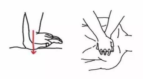 双 手 按 压 法:手掌根部重叠放在另一手背上,十指相扣.图片