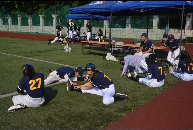 11月12日,联赛去看(打)上海大学生我要垒球啦!芭提雅空中滑翔热气球图片