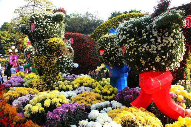 金秋赏菊正此时,盘点四大著名的菊花展会