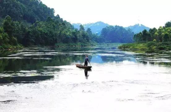 峨眉河湿地图片