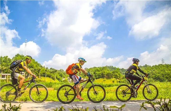 沿线风景优美 ⑤ 积分赛—自由追风线 站点:龙城广场,龙园公园,鹤湖