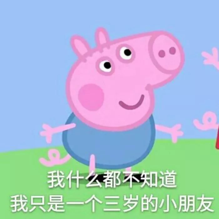 小猪佩奇头像