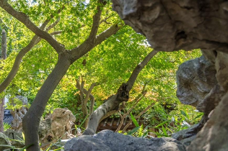 乾隆皇帝最爱的苏州园林,不是名气最大的拙政园而是这一座