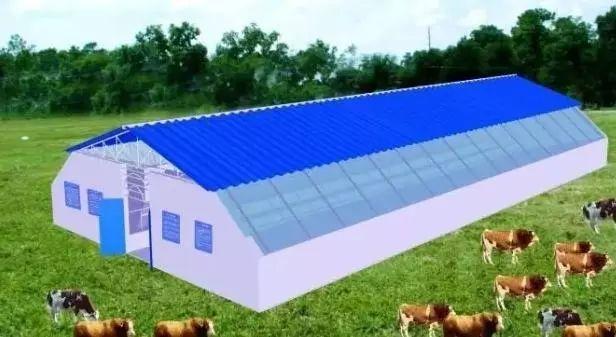 肉牛养殖场平面设计图,养牛场牛棚牛舍图纸
