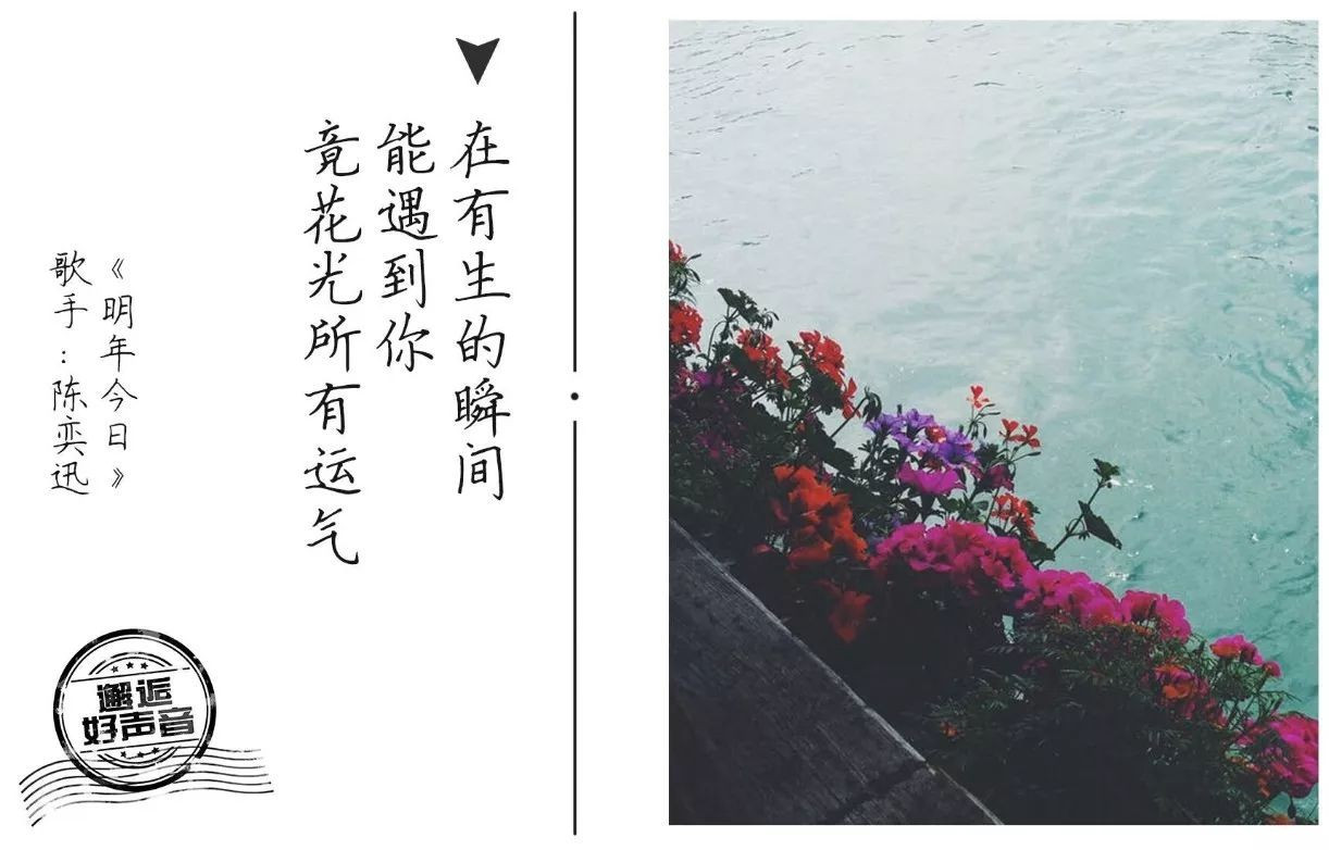 林夕最经典的8句歌词,哪句有你的故事?