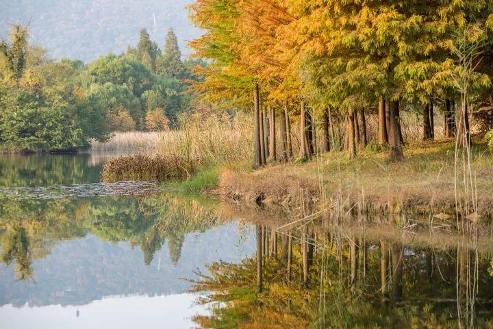 大片呈现:南京最美的时刻最美的地方!