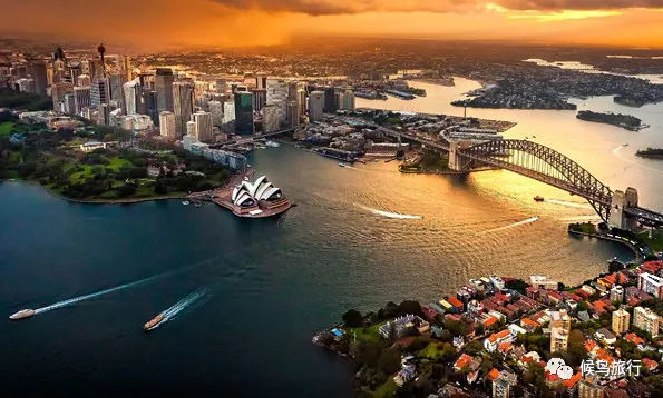澳大利亚,再见袋鼠,你好企鹅