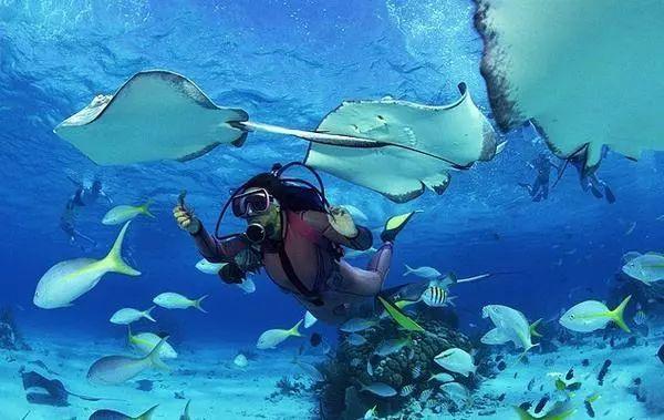 """泰国旅游玩""""海底漫步""""溺亡!真的太危险了!"""