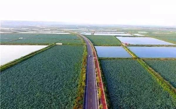 """一路连接50多个景点,全线通行不收费!这条被誉为""""中国1号公路""""终于通车了!"""