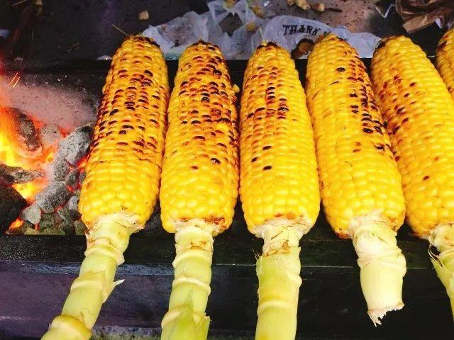 求撸丝片种子_果实 蔬菜 植物 种子 640_480
