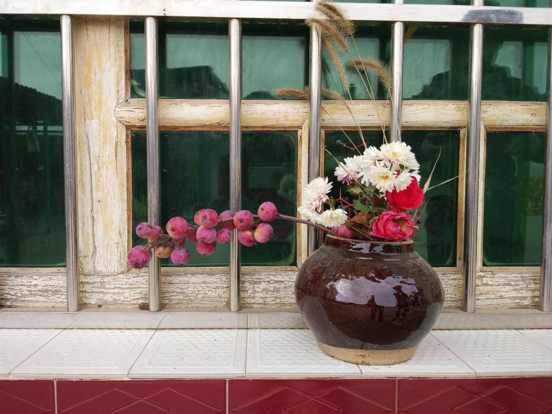 真实的陕北农村,遍地的水果没人摘