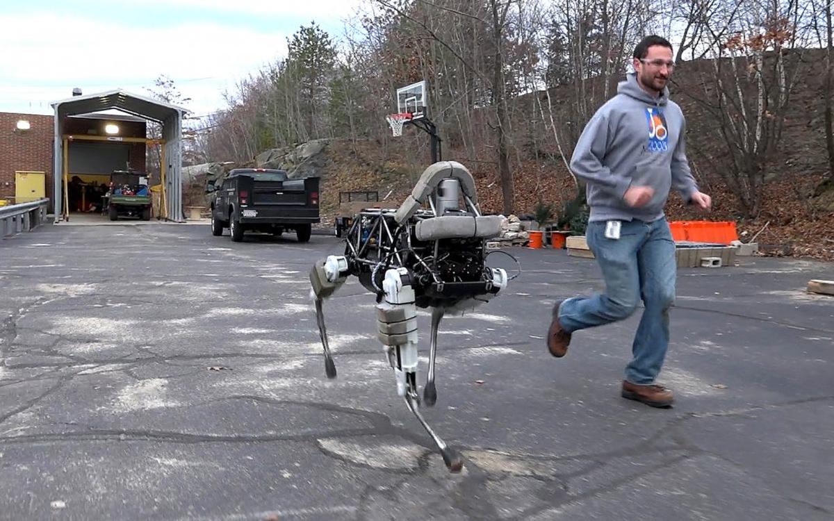 网红机器人又来了,在家