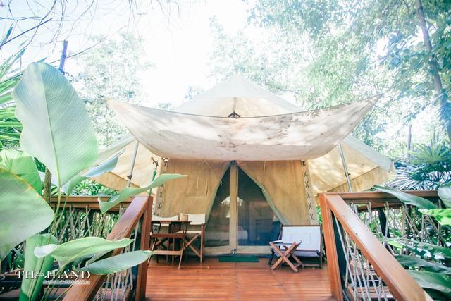 有咖啡机和厕所的超豪华帐篷,伴着鸟语花香醒来,枕着星空明月入眠