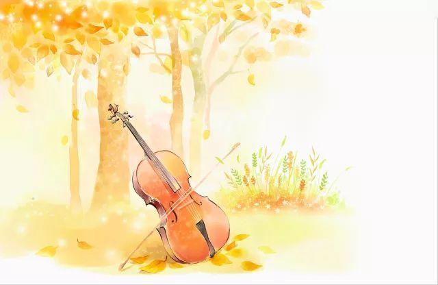 大提琴讲解音乐会回顾~!