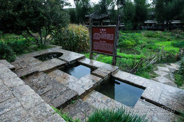 """丽江束河,尽管失去了往日的宁静古朴,但没人把蚊子当""""宠物""""养"""