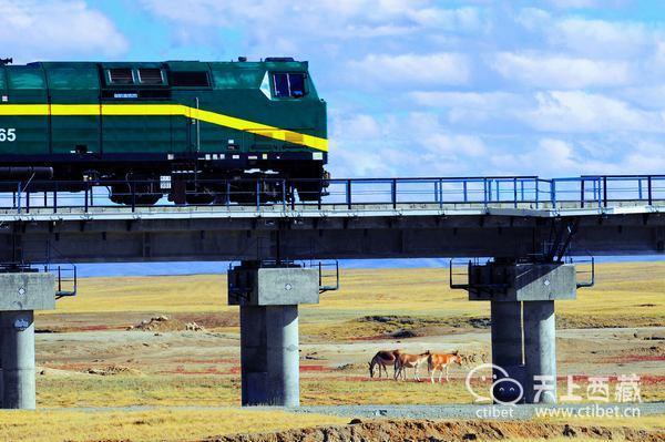 你一定没有见过这样的西藏!它是只有火车上才能看到的绝美风景