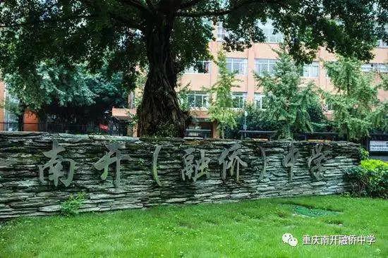 图片来自南开融侨官微图片