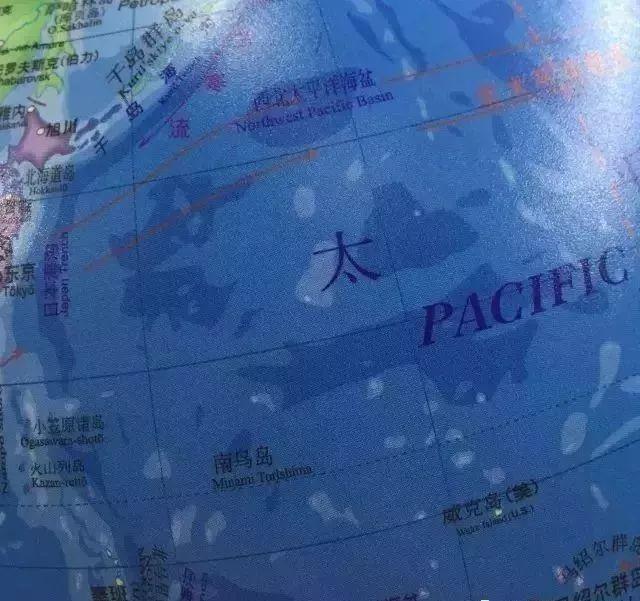纸盒海洋世界手工制作