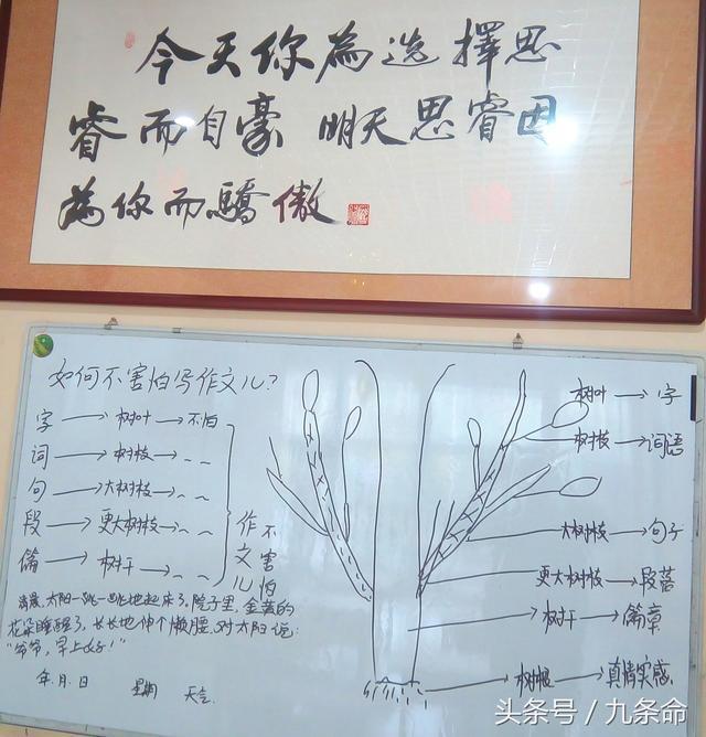 太难忘啦好耀华生动有趣儿的九棵树作文儿课v作文天津一堂初中图片