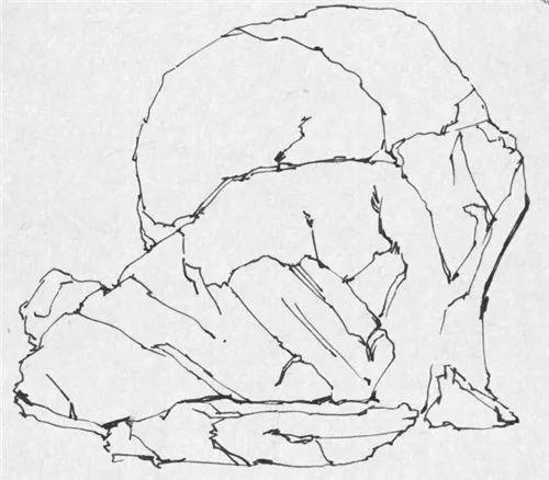 钢笔画零基础教程 钢笔画石头的画法