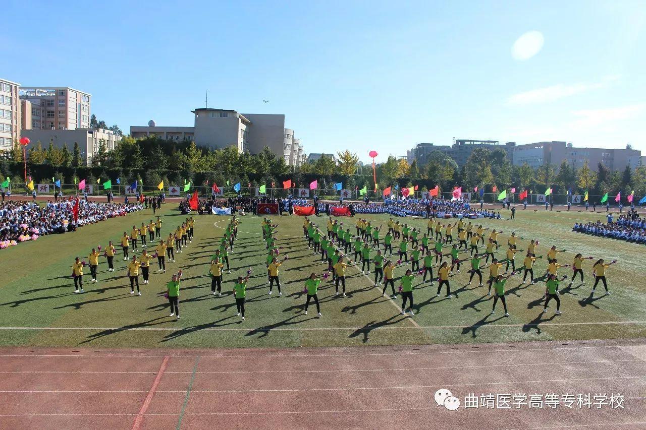 曲靖医学高等专科学校李顺金事迹