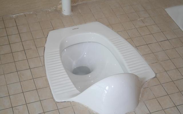 卫生间到底装马桶好还是蹲坑好 原来它这么脏好在我家没装错